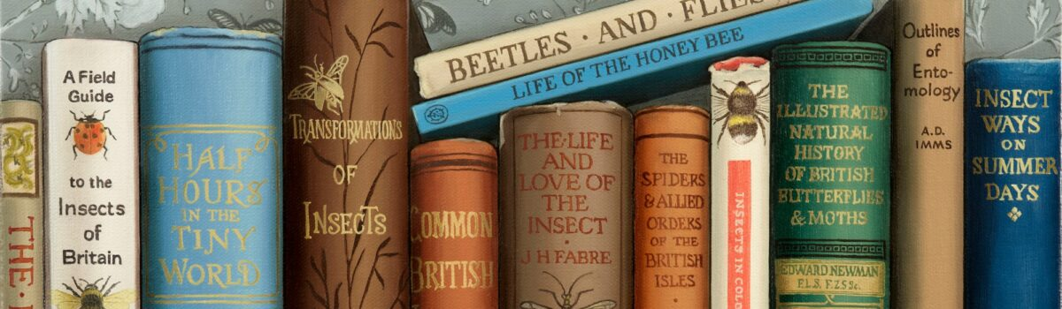 Insect Ways on Summer Days….